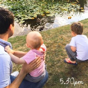5.30pm - feeding the ducks.